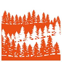 DF3430 ~ FOREST ~ embossing folder ~ Marianne Creatables