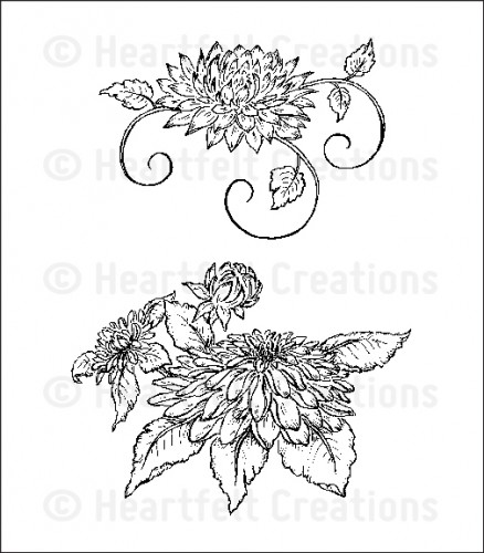 HCPC 3548 ~ DAHLIA CLUSTER ~ Heartfelt Creations pre cut stamps